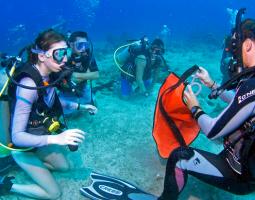 Scuba Diving Short Fun Trip 2 Dives (3 Hours)