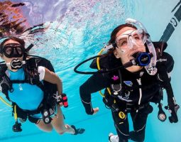 Discover Scuba Diving A quick and easy introduction to explore the underwater world.