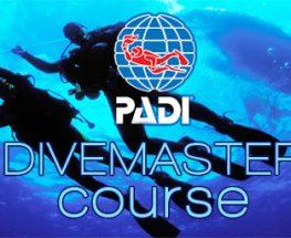 كورس احتراف تعليم الغوص (بادي- PADI)