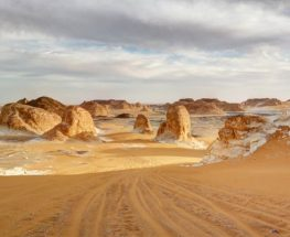 enjoy adventure and camping at western desert