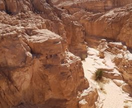 Enjoy an exciting 4-day trip to Saint Catherine