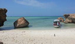 New Adventure in Farasan Islands