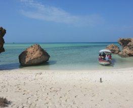 مغامرة جديدة في جزر فرسان