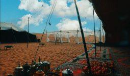 المخيم في الأحساء