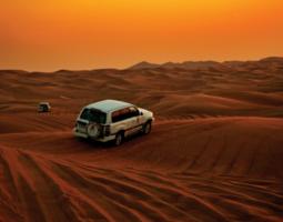 Full Day desert safari tour