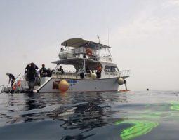 Scuba Diving Boat Trip in Jeddah