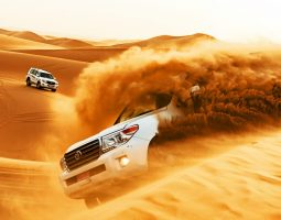 Dune Bashing in the southern deserts