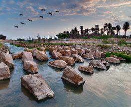 وادي حنيفة للتنزه