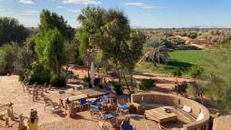Live an unforgettable experience in the beauty of the desert at Al Dakhla Oasis