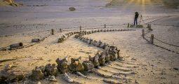 محمية وادي الحيتان ، الفيوم ، مصر