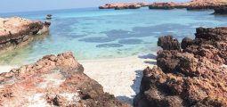 Full day trip to Daymaniat islands