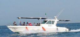 Enjoy a swimming trip near Jana Island or Juraid Island