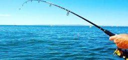 Fishing trips in Jubail