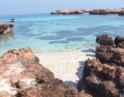 رحلة ليوم كامل إلى جزر الديمانيات