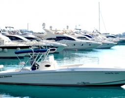 القارب السريع (الغوص والغطس)