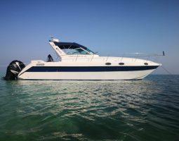A wonderful trip on a yacht