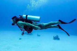 دورة الغوص في المياه المفتوحة PADI