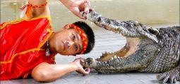 رحلة عرض التمساح الأفعى من شرم الشيخ