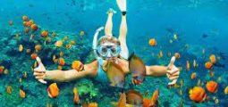 Have fun snorkeling in Oman
