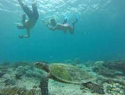Snorkeling In Bandar Khayran