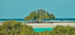 جولة يومية على شاطئ حنكوراب بحيرة القلعان - مرسى علم