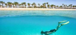 مرسى علم ومحمية الدلافين