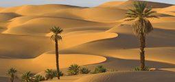 رحله في صحراء الربع الخالي بالرياض
