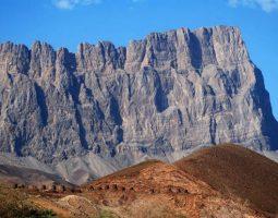 جولة سياحية لمدة نصف يوم إلى وادي العين