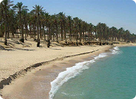 استكشف شمال سيناء