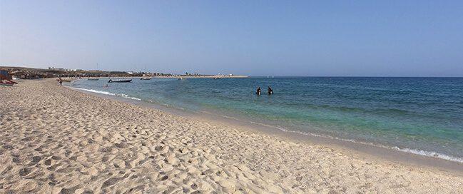 شاطئ أبو دباب: السلاحف البحرية وأبقار البحر والمياه الصافية