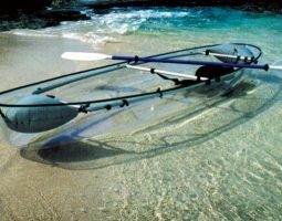Rent Clear kayaks and explore the beauty beneath
