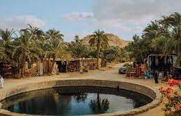 رحلة رائعة إلى سيوة لمدة 4 أيام
