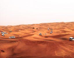 سفاري صحراوي VIP 4x4